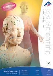 3B Scientific Akupunktur Katalog