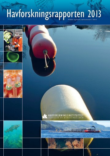 Havforskningsrapporten