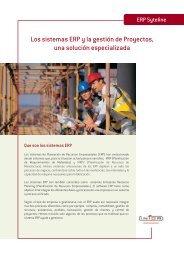 Sistemas-ERP-y-gestion-de-proyectos