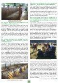 Bulletin N°53 - Veau sous la Mère - Page 3