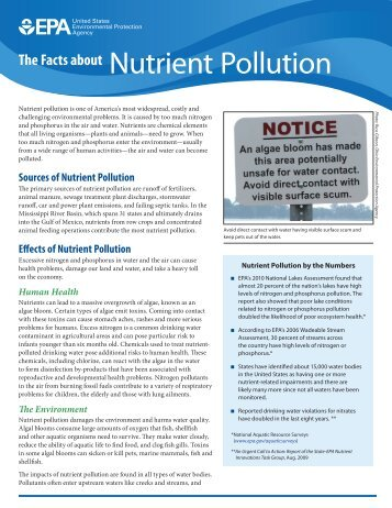 The Facts about Nutrient Pollution (PDF) - Water