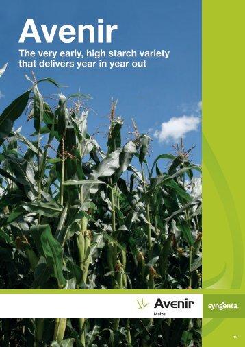 Avenir Maize Brochure