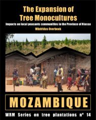 The Expansion of Tree Monocultures in Mozambique - World ...