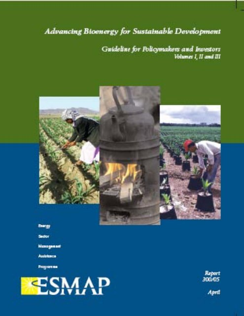 Advancing Bioenergy for Sustainable Development - COMMEND