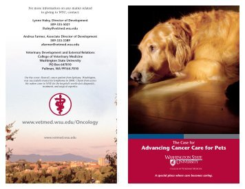 Advancing Cancer Care for Pets - Washington State University ...