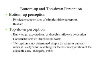 Bottom-up and Top-down Perception