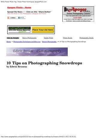 White Flower Photo Tips, Flower Photo Techniques| ApogeePhoto ...