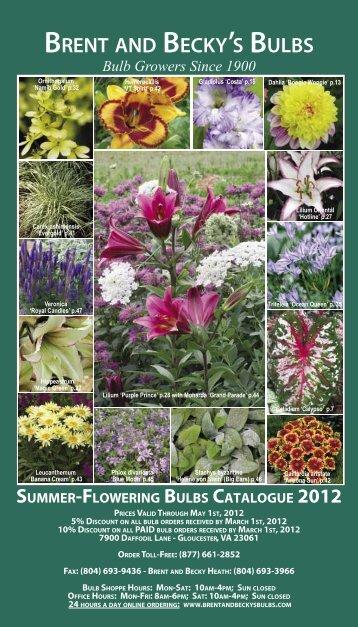 2008 Summer Flowering Bulbs Catalogue - Brent and Becky's Bulbs!