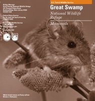 Download the mammals brochure - U.S. Fish and Wildlife Service