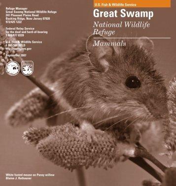Download the mammals brochure - U.S. Fish and Wildlife Service