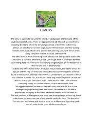 lemurs and photo gallery