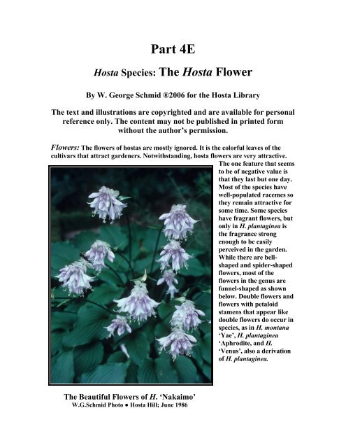 About The Hosta Flower And Its Parts Hosta Library