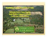 White & Blue Flowers - Bethesda Chevy Chase Chapter Izaak ...