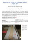 Report on the Textiles from Burgos Cathedral - Middelalder Centret - Page 6