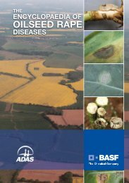 the encyclopaedia of oilseed rape diseases - BASF Crop Protection ...