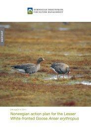 Norwegian action plan for the Lesser White-fronted Goose Anser ...