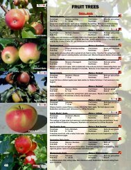 FRUIT TREES - Jeffries Nurseries Ltd.