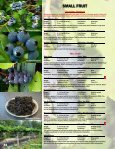 FRUIT TREES - Jeffries Nurseries Ltd. - Page 7