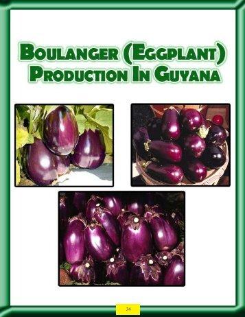 Boulanger - Guyana Marketing Corporation