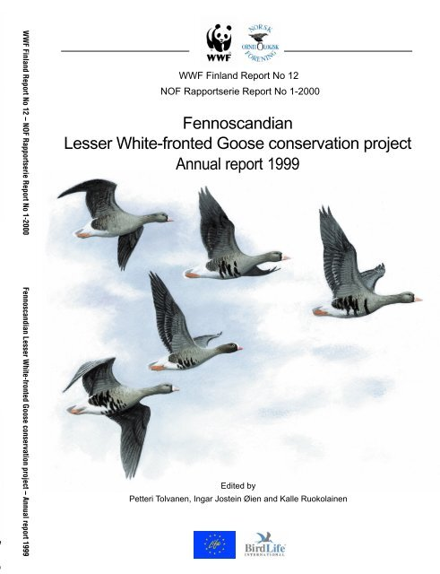 Fennoscandian Lesser White-fronted Goose conservation project ...