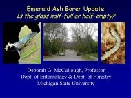 Emerald Ash Borer Update - Michigan State University: Integrated ...