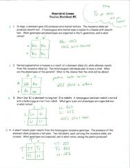 Monohybrid Cross Practice Problems Worksheet ...