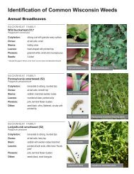IPM Crop Scouting Weed Guide - PDF