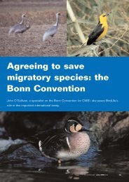 Agreeing to save migratory species: the Bonn Convention - BirdLife ...