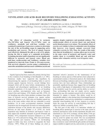 ventilation and acid–base recovery following exhausting activity in ...