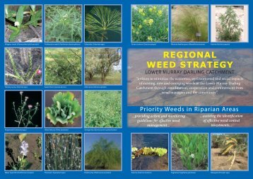 Priority Weeds in Riparian areas