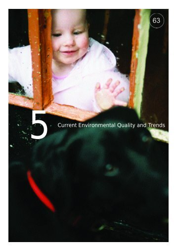 Current Environmental Quality and Trends - Department of ...