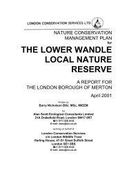 Lower Wandle - Merton Council