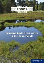 Bringing back clean water to the countryside - Pond Conservation