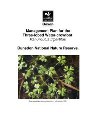 Management Plan for the Three-lobed Water-crowfoot Ranunculus ...
