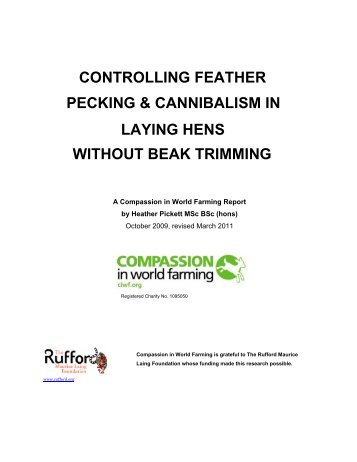 CONTROLLING FEATHER - Compassion in World Farming