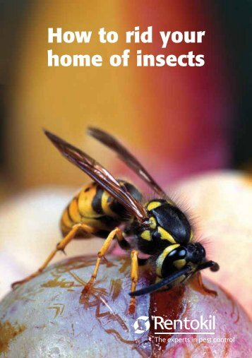 How to rid your home of Insects.(pdf - Rentokil