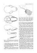 Black Myotis (Myotis nigricans) - Page 2