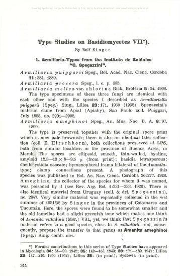 Type Studies on Basidiomycetes VII*).