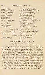 THE LINN.EAN GENUS GRYLLUS. - Mantis Study Group