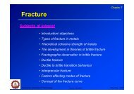 Chapter 7 Fracture