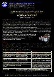 COMPANY PROFILE - edelvis