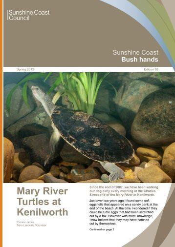 Mary River Turtles at Kenilworth - Sunshine Coast Council