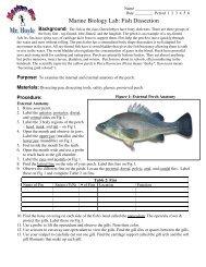 Marine Biology Lab: Fish Dissection