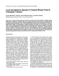 Local and Systemic Spread of Tobacco Mosaic Virus in Transgenic ...