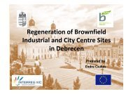 3 Brownfield regeneration (pdf) - B-Team Initiative