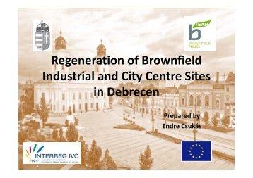3 Brownfield regeneration (pdf) - B-Team Initiative