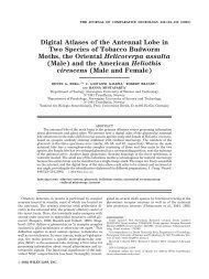 Digital Atlases of the Antennal Lobe in Two Species of Tobacco ...