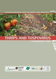 Thrips and tospovirus - Department of Primary Industries