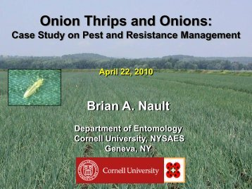 Onion Thrips and Onions Case Study on Pest - Biopesticide Industry ...