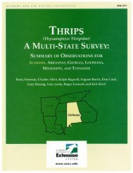 Thrips (Thysanoptera: Thripidae) a Multi State Survey - Cotton Inc